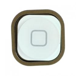 Krytka home Apple iPod Touch 5 White / bílá
